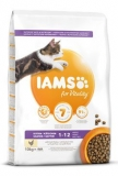 Iams Cat Kitten Chicken 2kg